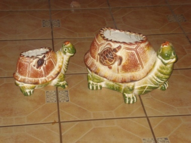 Juego de Tortugas (2 piezas)
